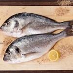 سبع طرق لإختيار السمك الطازج